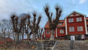 Bild på ett rött hus med många träd omkring